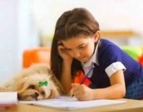 Пишемо правильно: вчимося писати букви, тримати ручку і стежимо за поставою фото